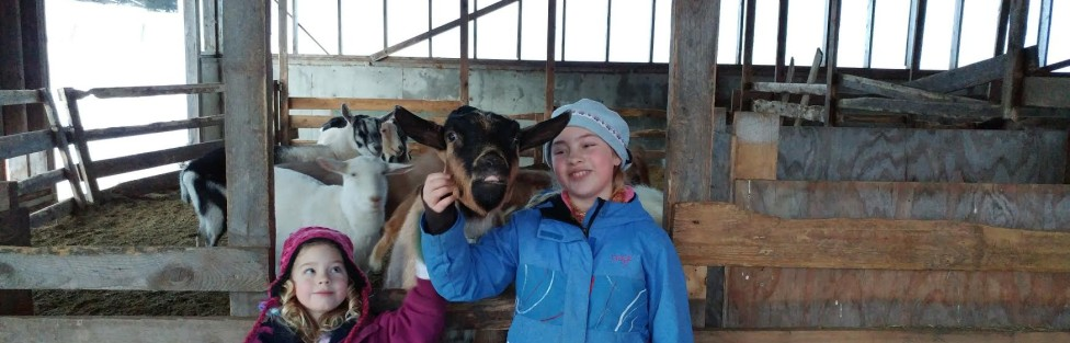 Image result for pictures of families and goats on a farm